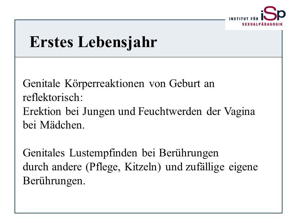 Erstes Lebensjahr Genitale Körperreaktionen von Geburt an reflektorisch: Erektion bei Jungen und Feuchtwerden der Vagina bei Mädchen. Genitales Lustem