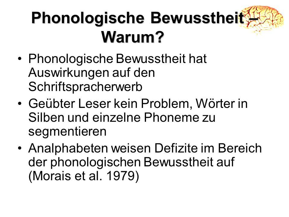 Phonologische Bewusstheit – Warum? Phonologische Bewusstheit hat Auswirkungen auf den Schriftspracherwerb Geübter Leser kein Problem, Wörter in Silben