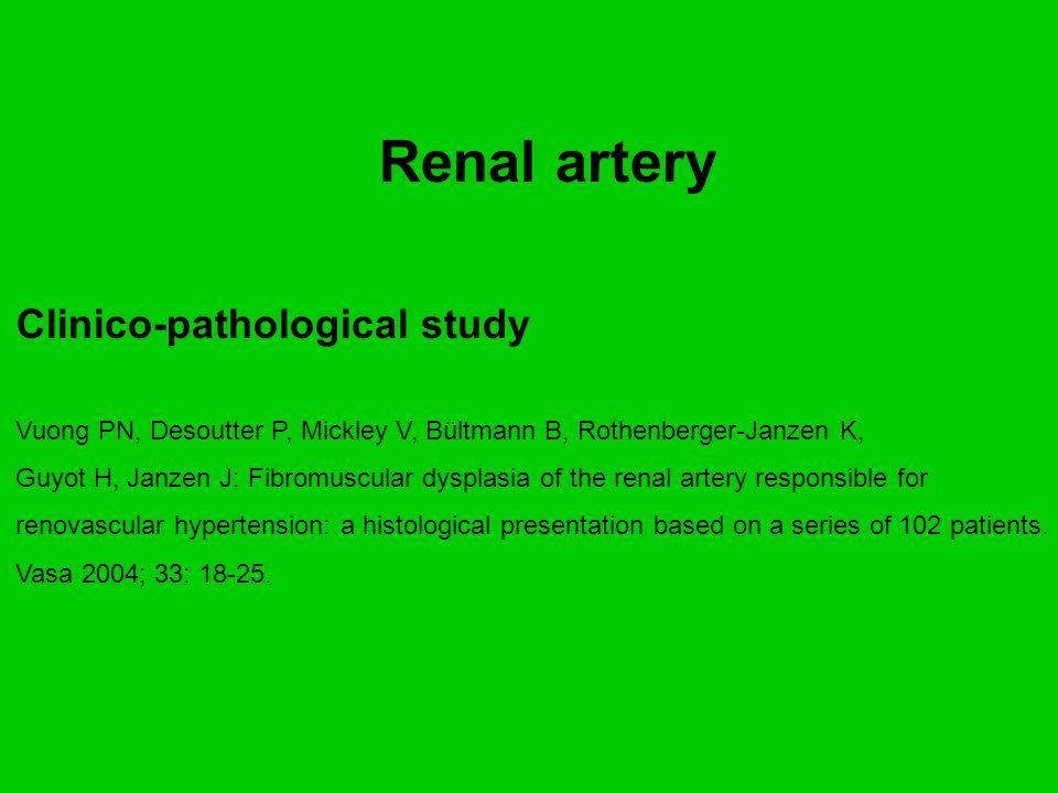 Renal artery Clinico-pathological study Vuong PN, Desoutter P, Mickley V, Bültmann B, Rothenberger-Janzen K, Guyot H, Janzen J: Fibromuscular dysplasi