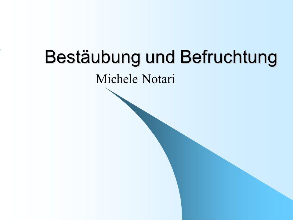 Bestäubung und Befruchtung Michele Notari