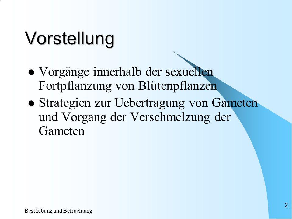 Bestäubung und Befruchtung 2 Vorstellung Vorgänge innerhalb der sexuellen Fortpflanzung von Blütenpflanzen Strategien zur Uebertragung von Gameten und Vorgang der Verschmelzung der Gameten