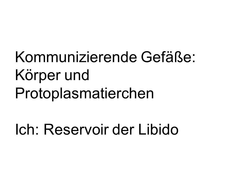 Kommunizierende Gefäße: Körper und Protoplasmatierchen Ich: Reservoir der Libido