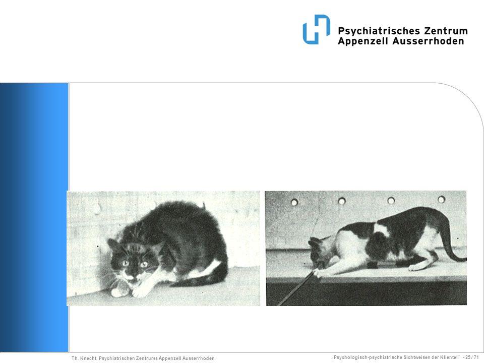 Psychologisch-psychiatrische Sichtweisen der Klientel - 25 / 71 Th. Knecht, Psychiatrischen Zentrums Appenzell Ausserrhoden
