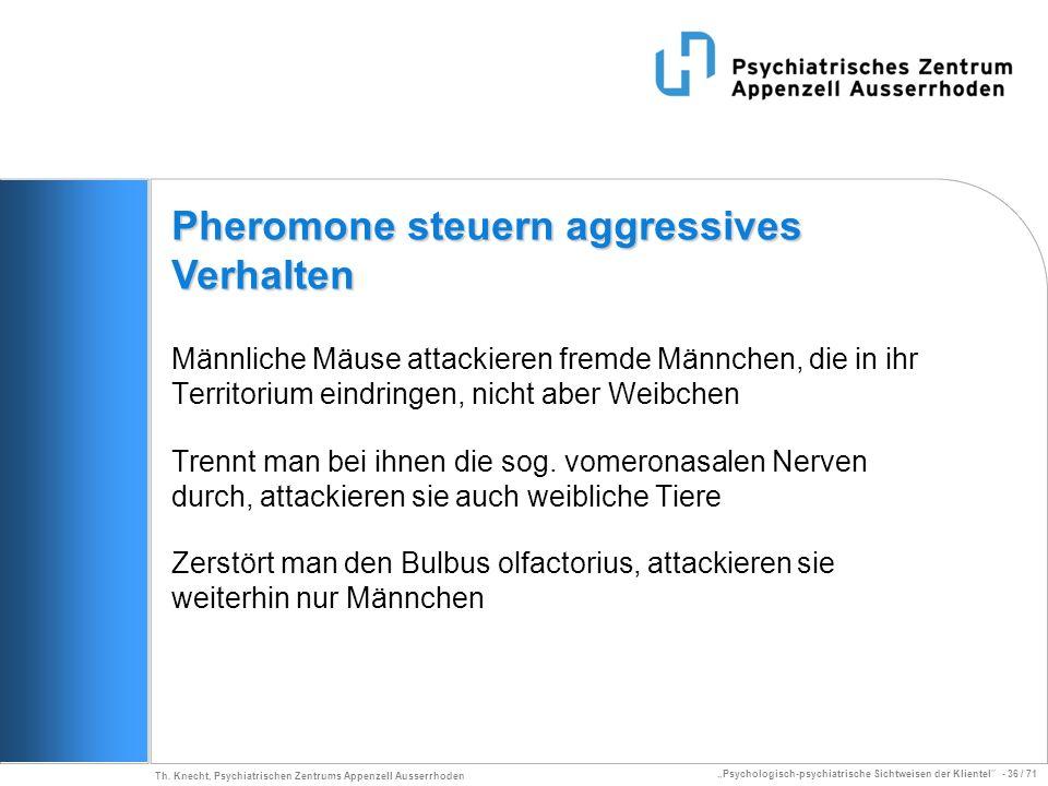 Psychologisch-psychiatrische Sichtweisen der Klientel - 36 / 71 Th. Knecht, Psychiatrischen Zentrums Appenzell Ausserrhoden Männliche Mäuse attackiere