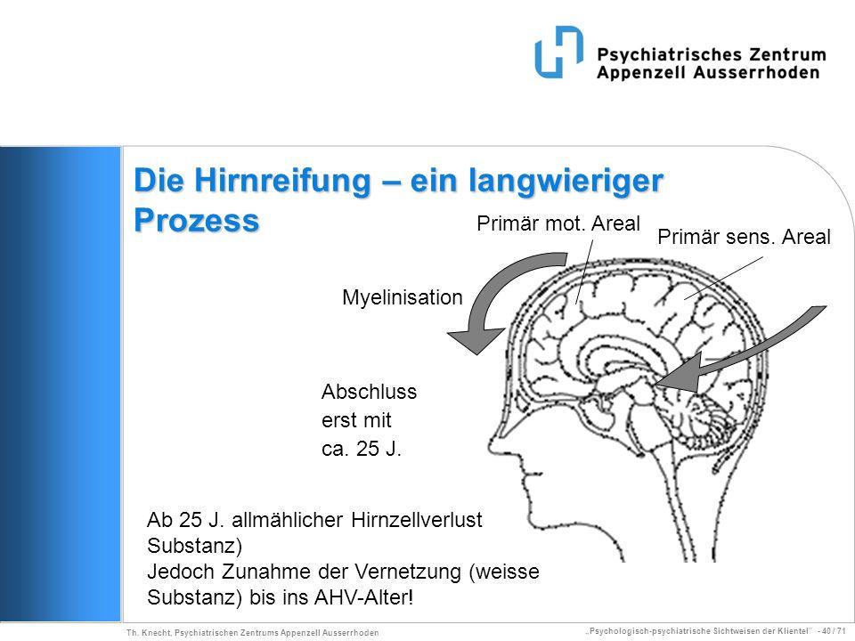 Psychologisch-psychiatrische Sichtweisen der Klientel - 40 / 71 Th. Knecht, Psychiatrischen Zentrums Appenzell Ausserrhoden Die Hirnreifung – ein lang