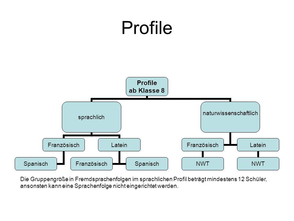 Profile ab Klasse 8 sprachlich Französisch Spanisch Latein FranzösischSpanisch naturwissenschaftlich Französisch NWT Latein NWT Die Gruppengröße in Fr