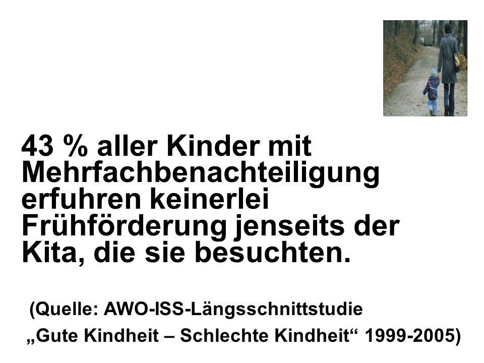 Quelle: Rauschenbach; Pothmann;Wilk (2009): Armut, Migration, Alleinerziehend – HzE in prekären Lebenslagen.
