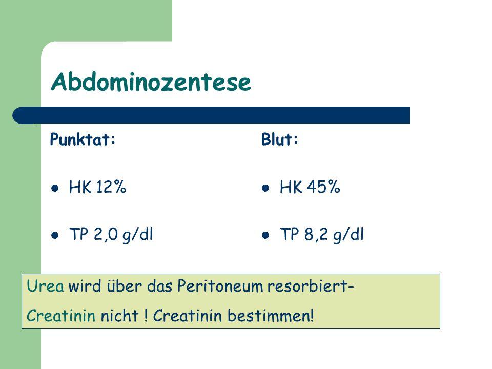 Abdominozentese Punktat: HK 12% TP 2,0 g/dl Crea 21,5 mg/dl Blut: HK 45% TP 8,2 g/dl Crea 4,7 mg/dl Urea wird über das Peritoneum resorbiert- Creatini
