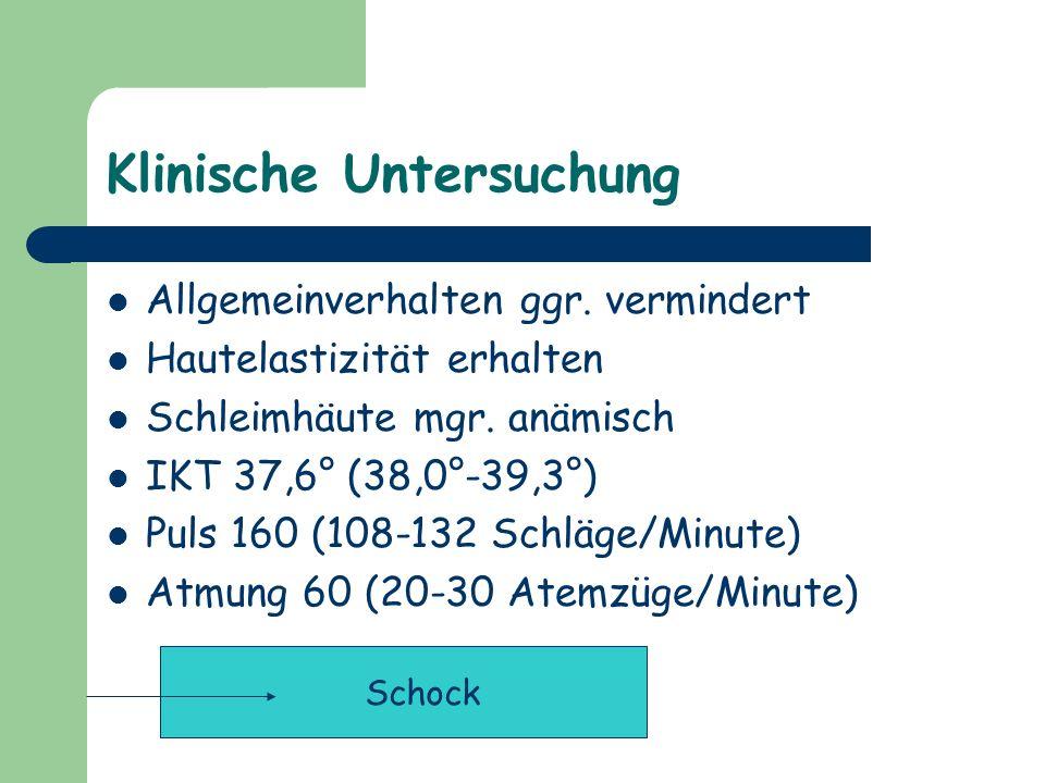 Klinische Untersuchung Allgemeinverhalten ggr. vermindert Hautelastizität erhalten Schleimhäute mgr. anämisch IKT 37,6° (38,0°-39,3°) Puls 160 (108-13