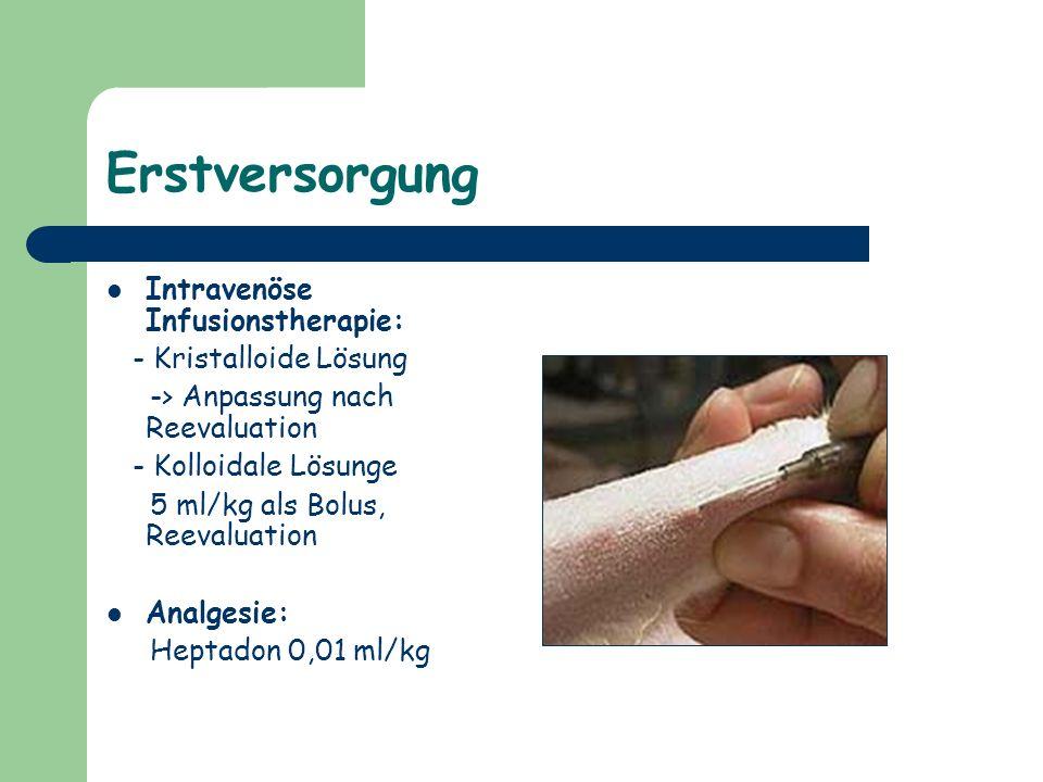 Erstversorgung Intravenöse Infusionstherapie: - Kristalloide Lösung -> Anpassung nach Reevaluation - Kolloidale Lösunge 5 ml/kg als Bolus, Reevaluatio