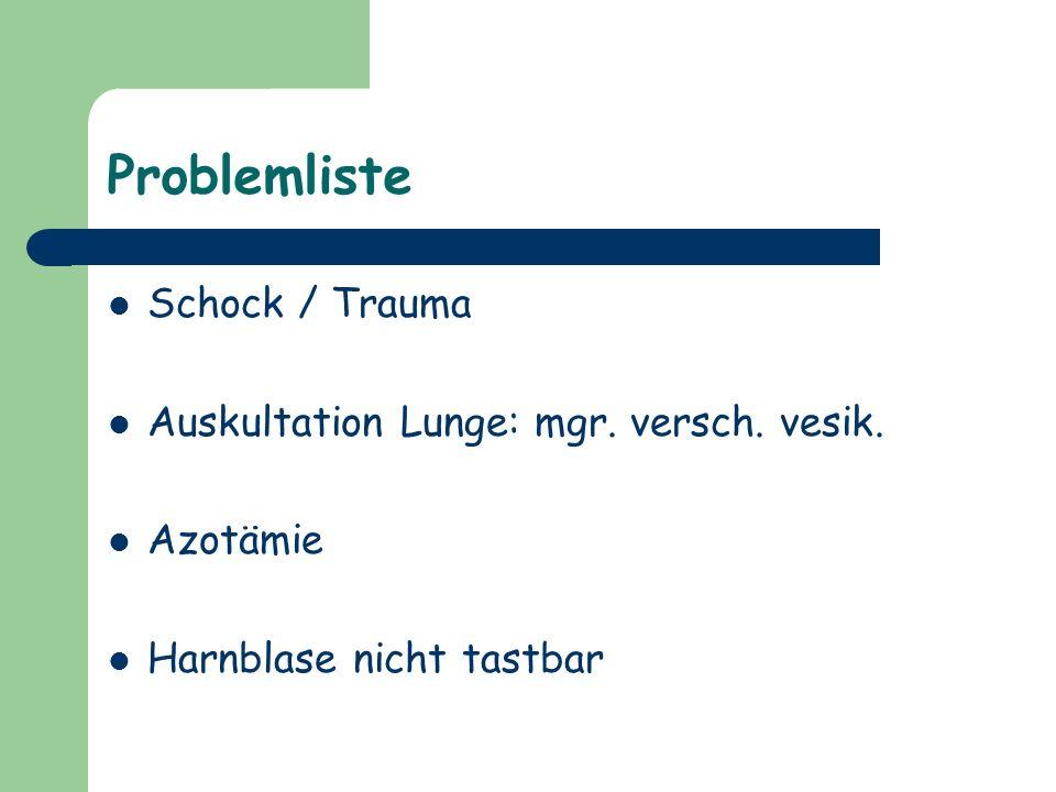 Problemliste Schock / Trauma Auskultation Lunge: mgr. versch. vesik. Azotämie Harnblase nicht tastbar