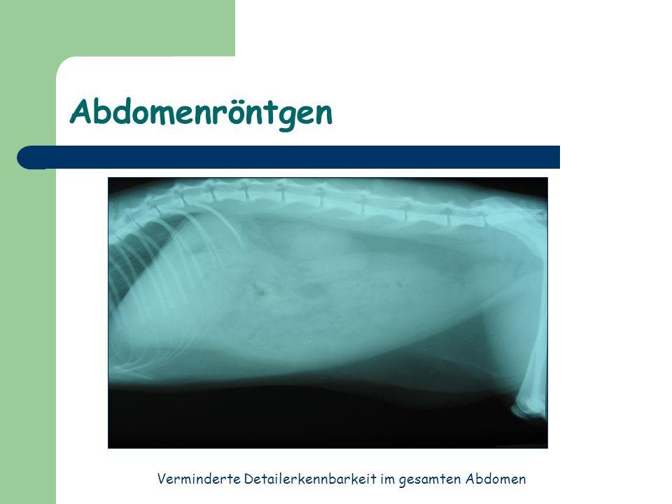 Abdominozentese Punktat: HK 12% TP 2,0 g/dl Crea 21,5 mg/dl Blut: HK 45% TP 8,2 g/dl Crea 4,7 mg/dl Urea wird über das Peritoneum resorbiert- Creatinin nicht .