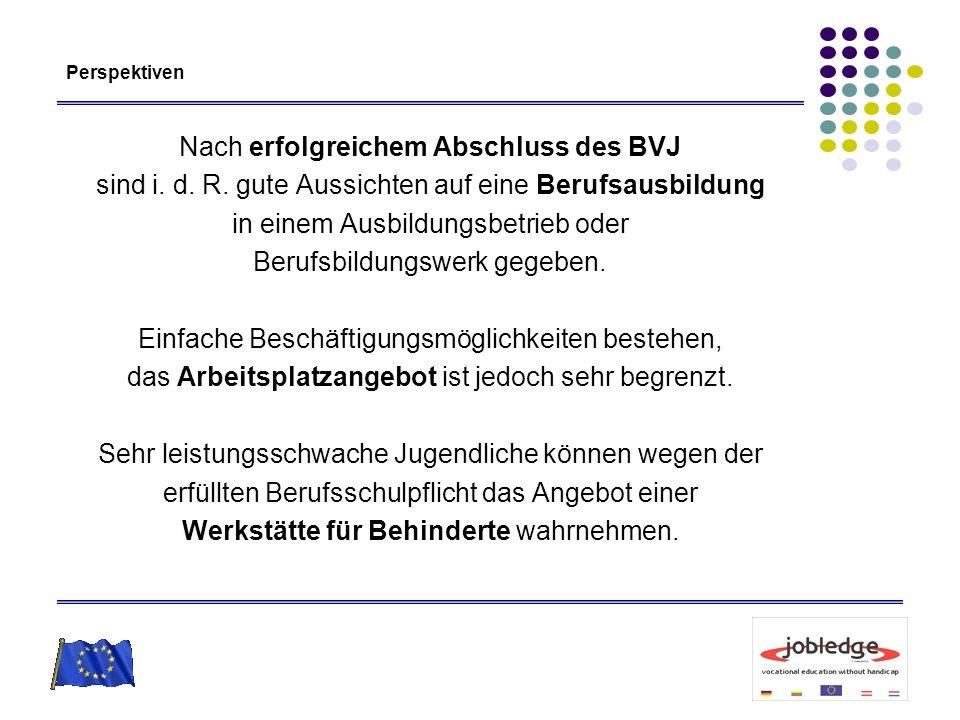 Perspektiven Nach erfolgreichem Abschluss des BVJ sind i. d. R. gute Aussichten auf eine Berufsausbildung in einem Ausbildungsbetrieb oder Berufsbildu