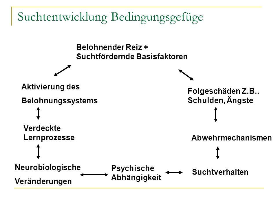 Suchtentwicklung Bedingungsgefüge Belohnender Reiz + Suchtfördernde Basisfaktoren Aktivierung des Belohnungssystems Verdeckte Lernprozesse Neurobiolog