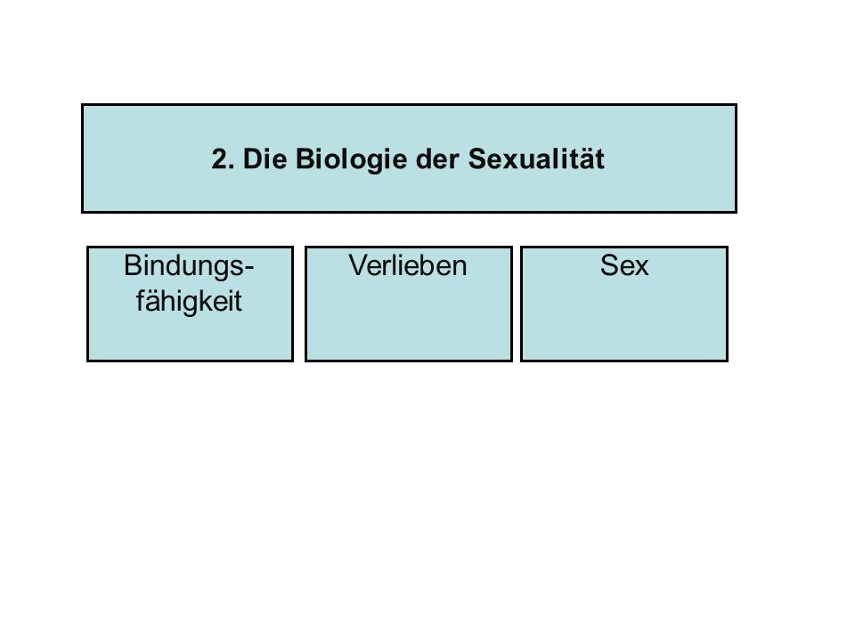 2. Die Biologie der Sexualität Bindungs- fähigkeit SexVerlieben