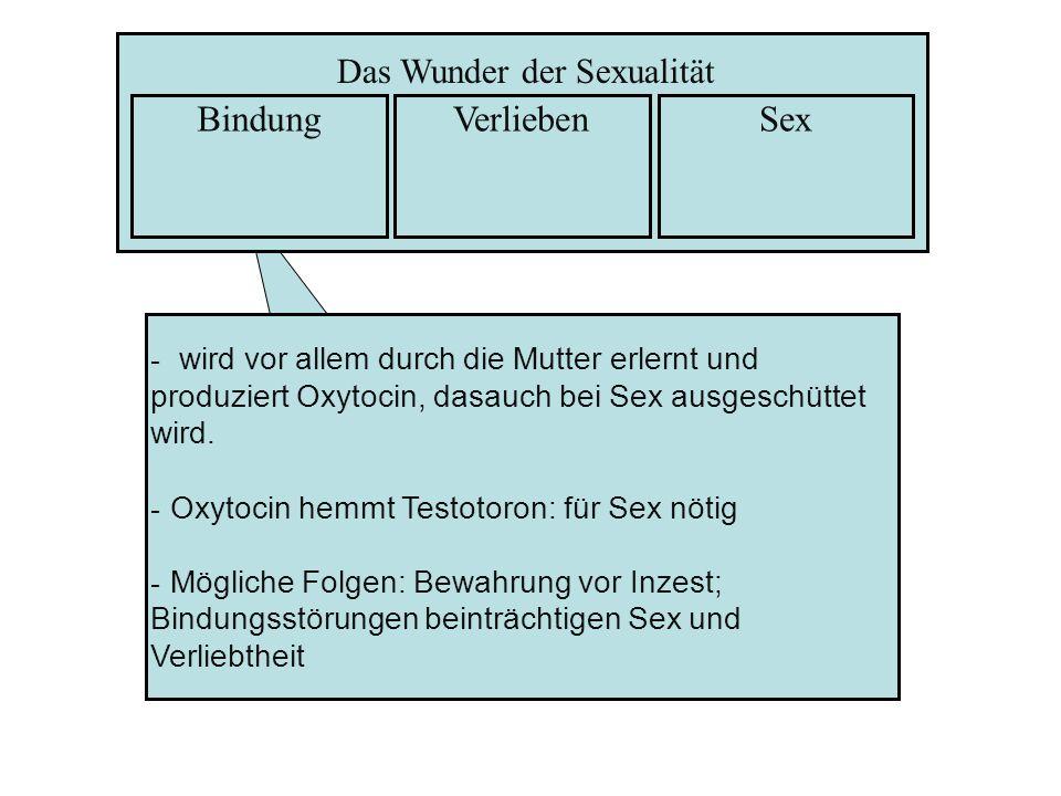 - wird vor allem durch die Mutter erlernt und produziert Oxytocin, dasauch bei Sex ausgeschüttet wird. - Oxytocin hemmt Testotoron: für Sex nötig - Mö