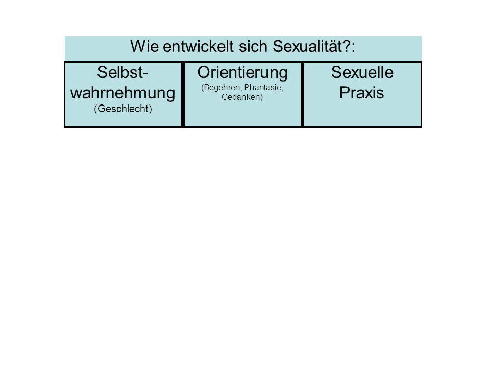 Selbst- wahrnehmung (Geschlecht) Sexuelle Praxis Orientierung (Begehren, Phantasie, Gedanken) Wie entwickelt sich Sexualität?: