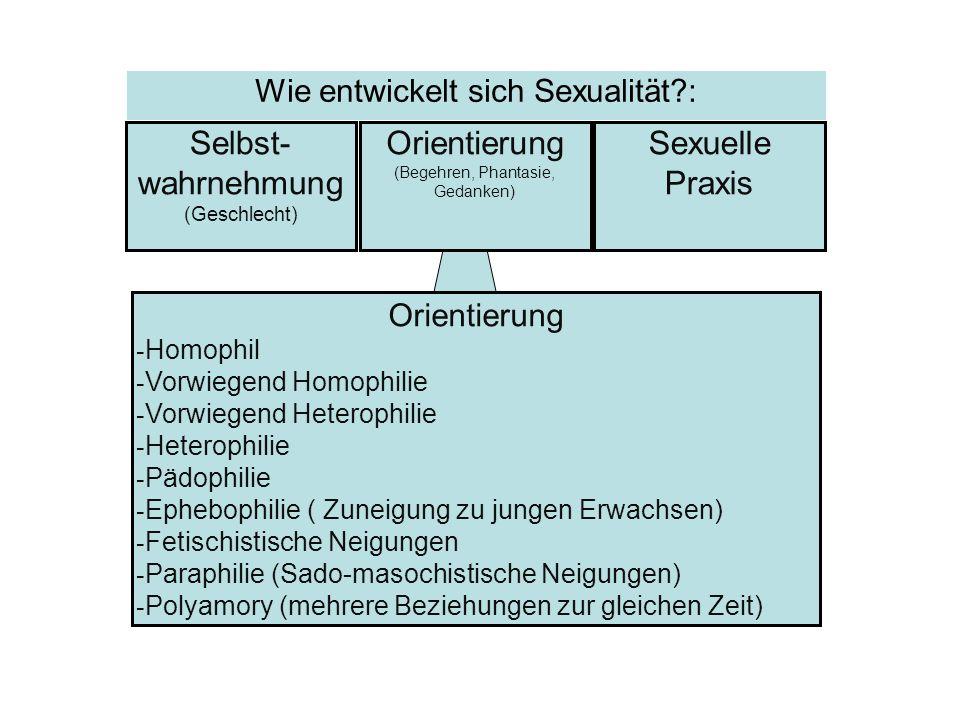 Orientierung - Homophil - Vorwiegend Homophilie - Vorwiegend Heterophilie - Heterophilie - Pädophilie - Ephebophilie ( Zuneigung zu jungen Erwachsen)