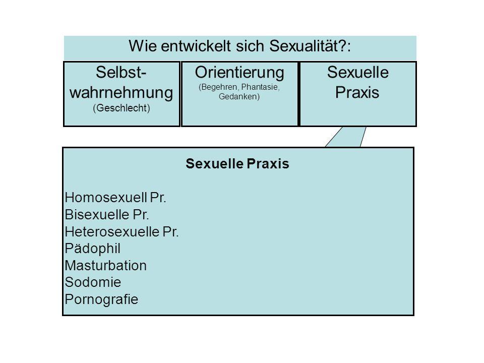 Sexuelle Praxis Homosexuell Pr. Bisexuelle Pr. Heterosexuelle Pr. Pädophil Masturbation Sodomie Pornografie Selbst- wahrnehmung (Geschlecht) Sexuelle