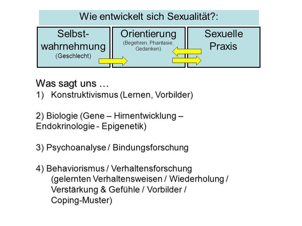 Selbst- wahrnehmung (Geschlecht) Sexuelle Praxis Orientierung (Begehren, Phantasie, Gedanken) Was sagt uns … 1)Konstruktivismus (Lernen, Vorbilder) 2)