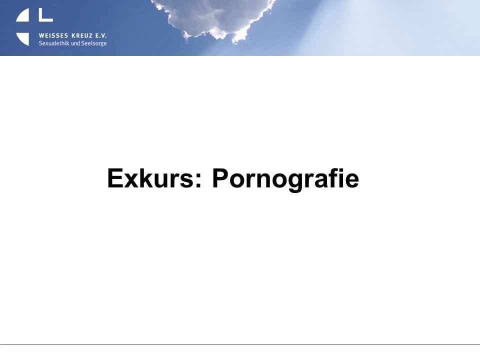 Exkurs: Pornografie