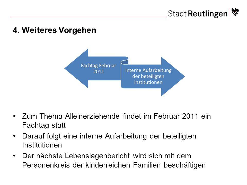 4. Weiteres Vorgehen Zum Thema Alleinerziehende findet im Februar 2011 ein Fachtag statt Darauf folgt eine interne Aufarbeitung der beteiligten Instit