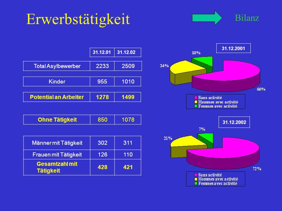 Erwerbstätigkeit Bilanz Total Asylbewerber22332509 Kinder9551010 Potential an Arbeiter12781499 Ohne Tätigkeit8501078 Männer mit Tätigkeit302311 Frauen mit Tätigkeit126110 Gesamtzahl mit Tätigkeit 428421 31.12.0131.12.02 31.12.2001 31.12.2002