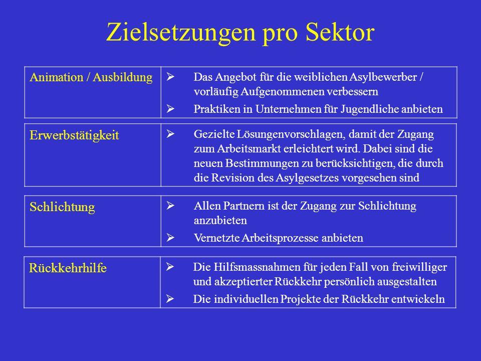 Zielsetzungen pro Sektor Animation / Ausbildung Das Angebot für die weiblichen Asylbewerber / vorläufig Aufgenommenen verbessern Praktiken in Unternehmen für Jugendliche anbieten Schlichtung Allen Partnern ist der Zugang zur Schlichtung anzubieten Vernetzte Arbeitsprozesse anbieten Erwerbstätigkeit Gezielte Lösungenvorschlagen, damit der Zugang zum Arbeitsmarkt erleichtert wird.