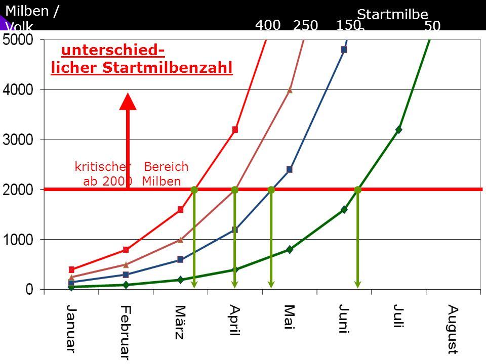 Milben / Volk i unterschied- licher Startmilbenzahl kritischer Bereich ab 2000 Milben 400 250 150 50 Startmilbe n