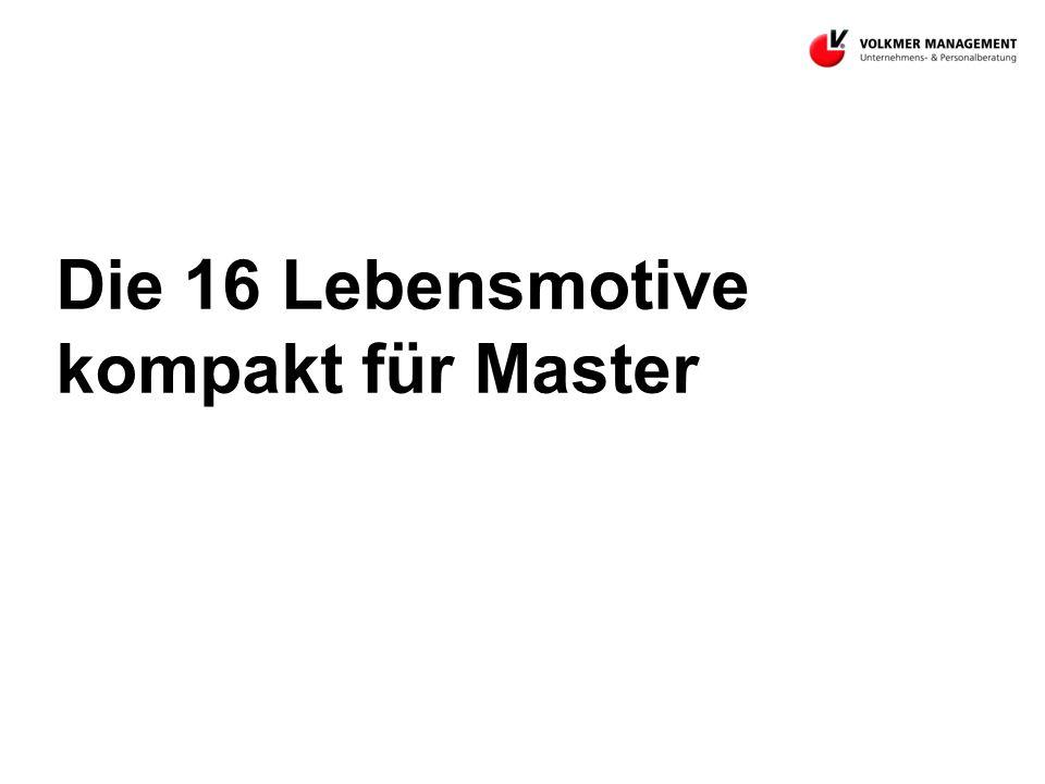 Die 16 Lebensmotive kompakt für Master