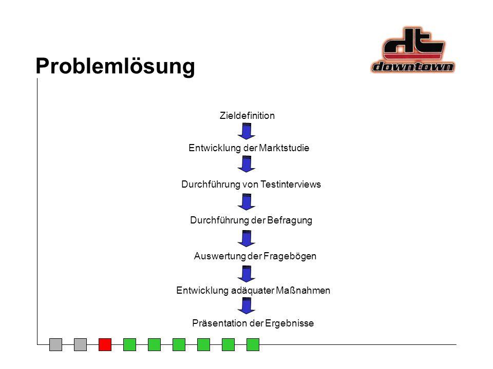 Problemlösung Zieldefinition Entwicklung der Marktstudie Durchführung von Testinterviews Durchführung der Befragung Auswertung der Fragebögen Entwickl