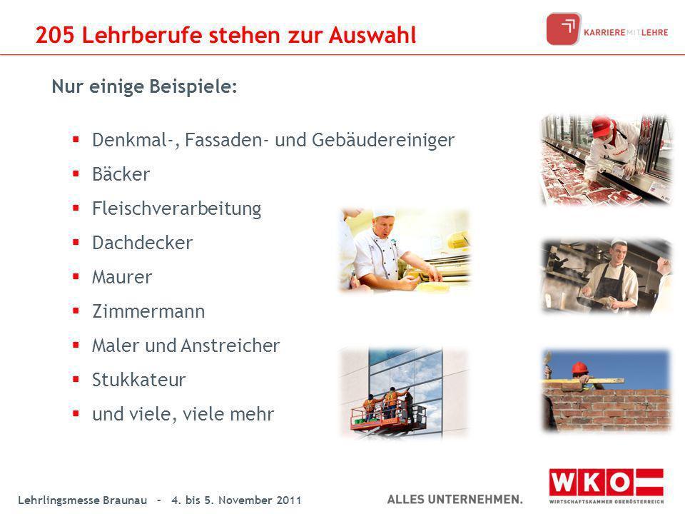 Lehrlingsmesse Braunau – 4. bis 5. November 2011 Denkmal-, Fassaden- und Gebäudereiniger Bäcker Fleischverarbeitung Dachdecker Maurer Zimmermann Maler