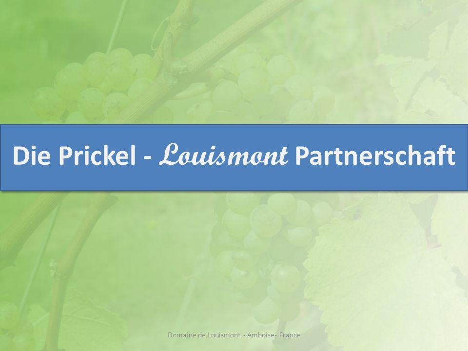 Die Preisverhandlungen Domaine de Louismont - Amboise- France