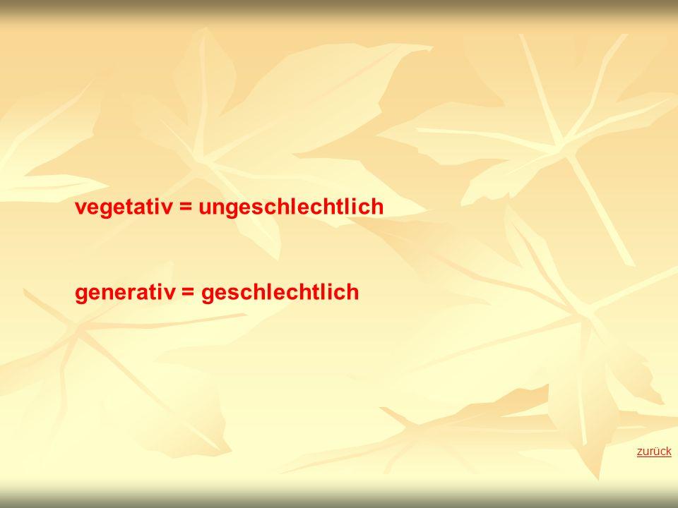 vegetativ = ungeschlechtlich generativ = geschlechtlich zurück
