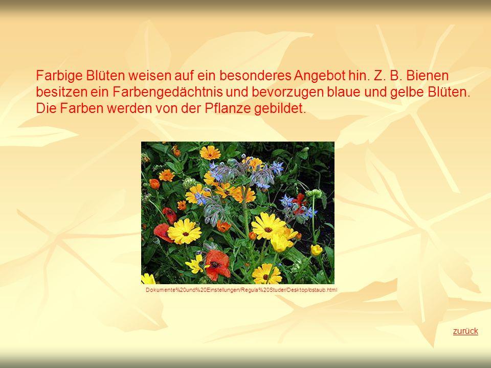 Farbige Blüten weisen auf ein besonderes Angebot hin. Z. B. Bienen besitzen ein Farbengedächtnis und bevorzugen blaue und gelbe Blüten. Die Farben wer