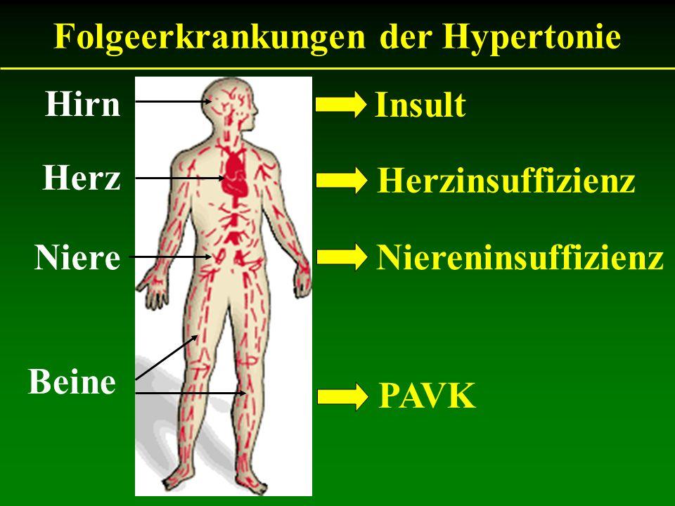 Hirn Beine Herz Niere Folgeerkrankungen der Hypertonie Insult PAVK Herzinsuffizienz Niereninsuffizienz