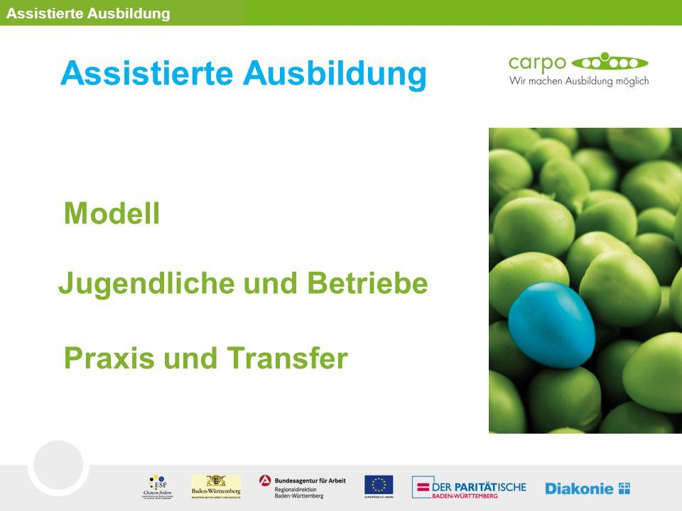 Modell Praxis und Transfer Jugendliche und Betriebe Assistierte Ausbildung