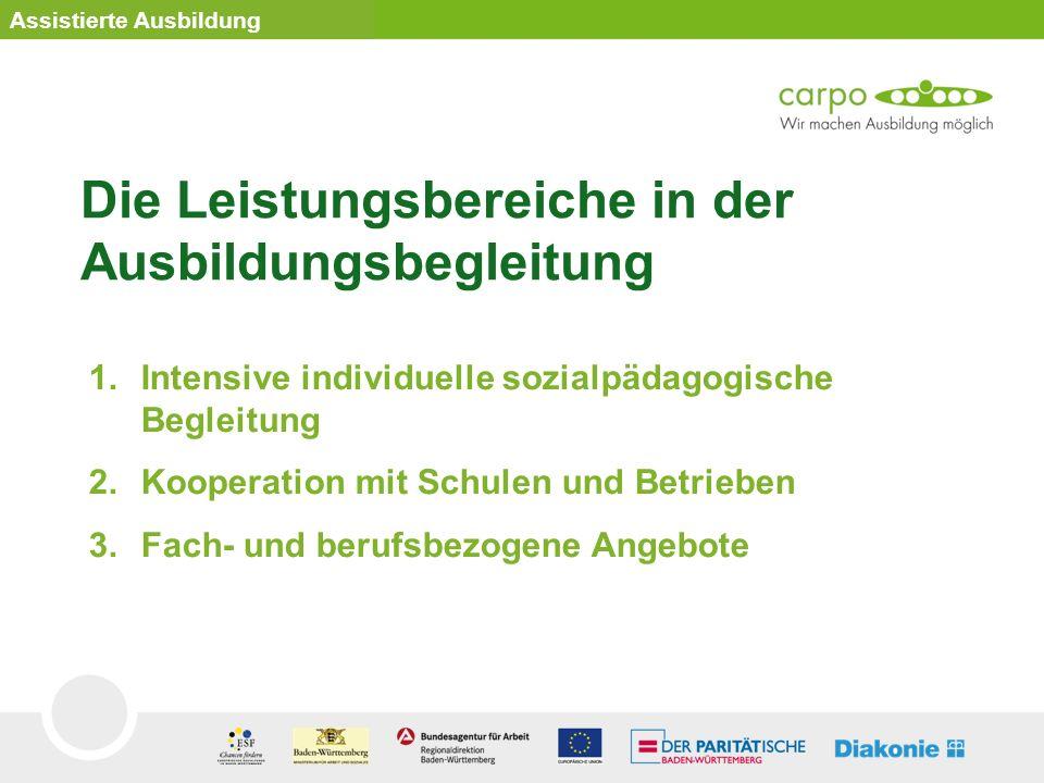 1.Intensive individuelle sozialpädagogische Begleitung 2.Kooperation mit Schulen und Betrieben 3.Fach- und berufsbezogene Angebote Assistierte Ausbild