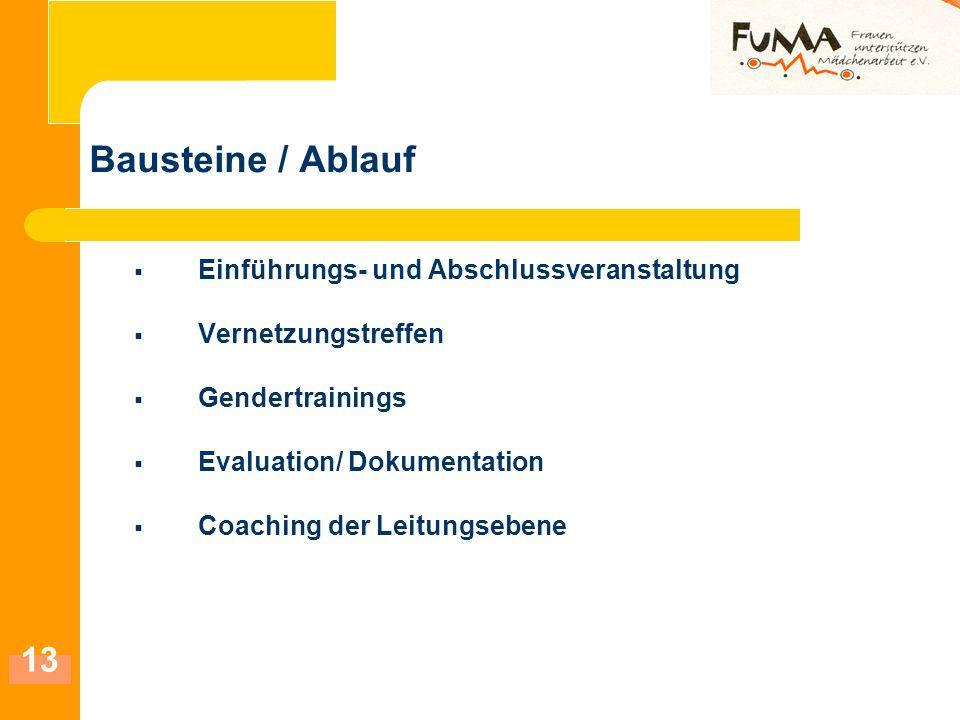 13 Bausteine / Ablauf Einführungs- und Abschlussveranstaltung Vernetzungstreffen Gendertrainings Evaluation/ Dokumentation Coaching der Leitungsebene