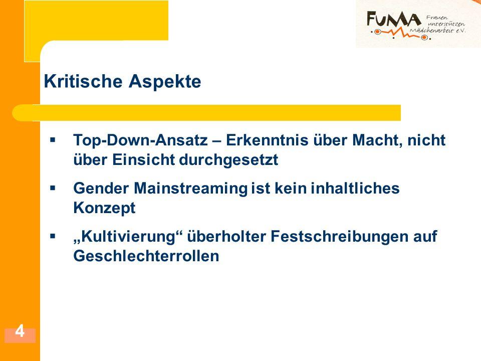 5 Positive Aspekte Geschlecht wird als strukturelle Kategorie verankert GM - eine Strategie für Männer und Frauen Erkenntnis und Einsicht in Genderfragen Geschlechterfrage auf einer sachlichen Ebene