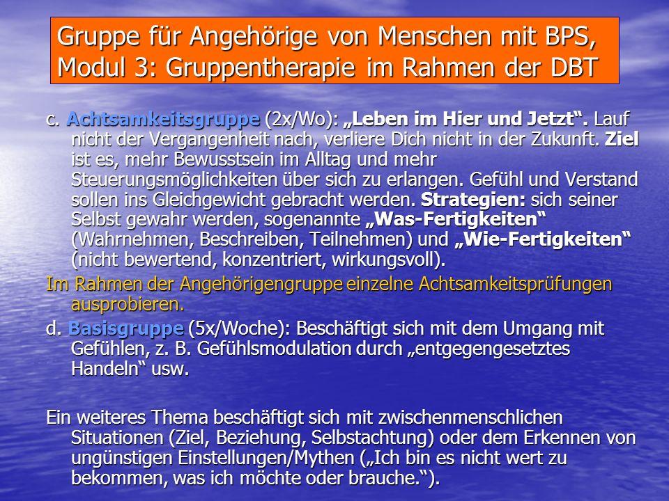 Gruppe für Angehörige von Menschen mit BPS Modul 2: Grundprinzip DBT Therapeutische Grundannahmen Zu Therapiebeginn werden die Therapieziele besproche