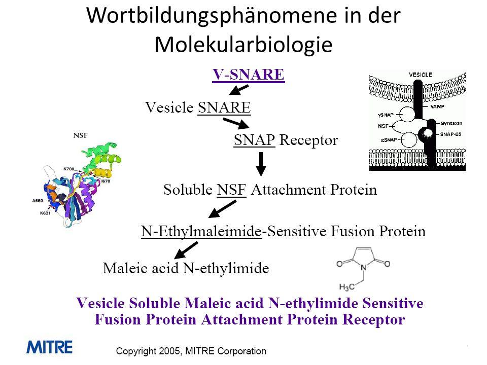 Wortbildungsphänomene in der Molekularbiologie
