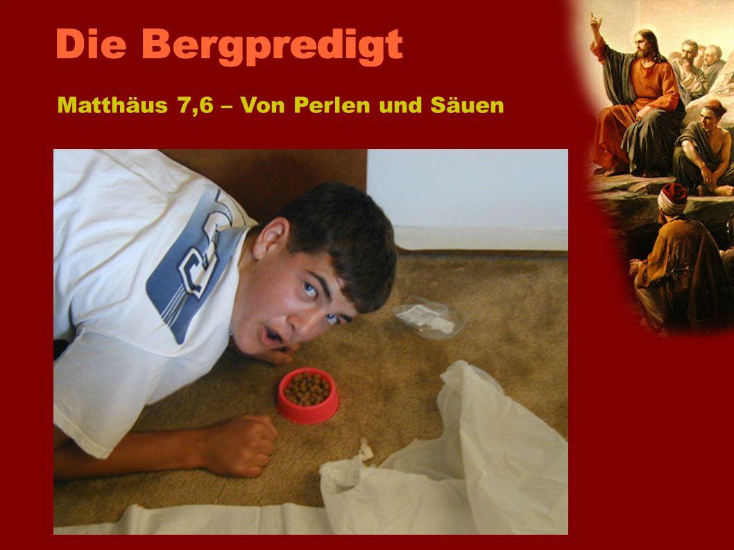 Schweine fressen keine Perlen Hunde fressen nichts Heiliges Matthäus 7,6 – Von Perlen und Säuen Die Bergpredigt