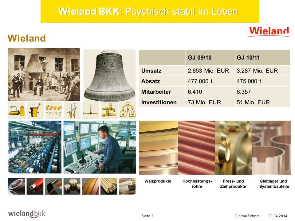 20.04.2014Seite 4 BGM-Struktur Florian Schoof BGM Regelkreis