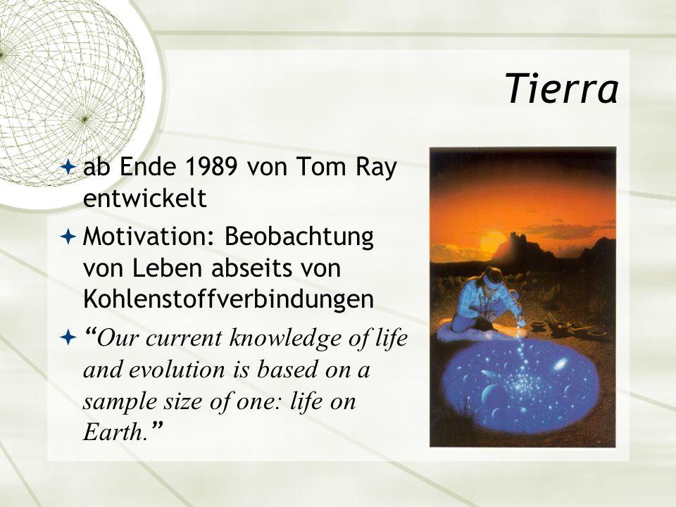 Tierra ab Ende 1989 von Tom Ray entwickelt Motivation: Beobachtung von Leben abseits von Kohlenstoffverbindungen Our current knowledge of life and evo