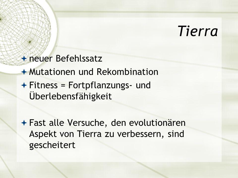 Tierra neuer Befehlssatz Mutationen und Rekombination Fitness = Fortpflanzungs- und Überlebensfähigkeit Fast alle Versuche, den evolutionären Aspekt v