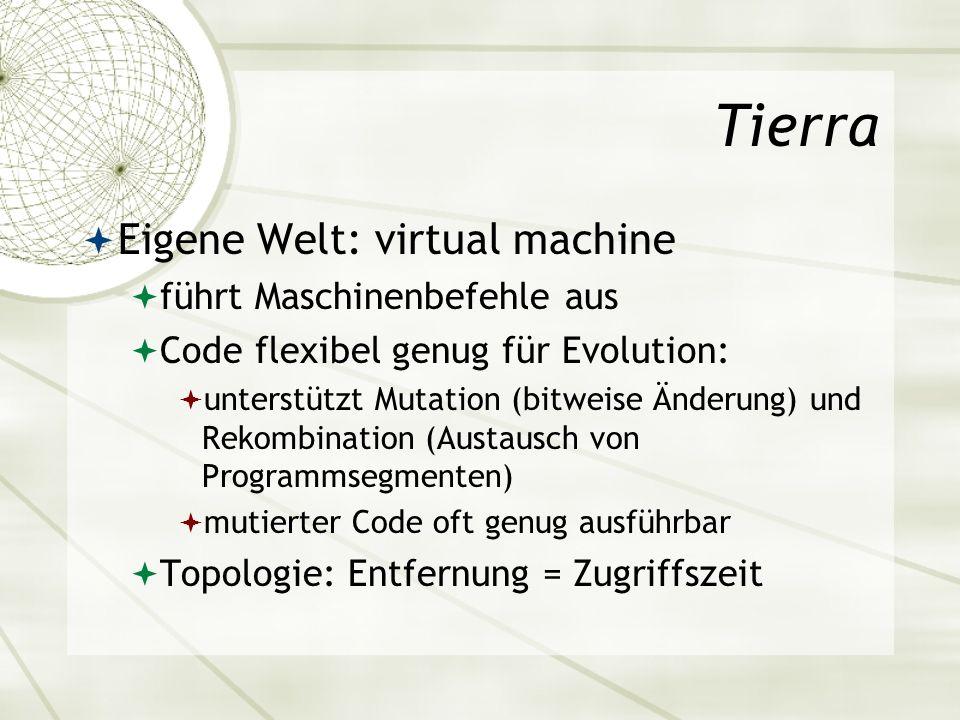 Tierra Eigene Welt: virtual machine führt Maschinenbefehle aus Code flexibel genug für Evolution: unterstützt Mutation (bitweise Änderung) und Rekombi