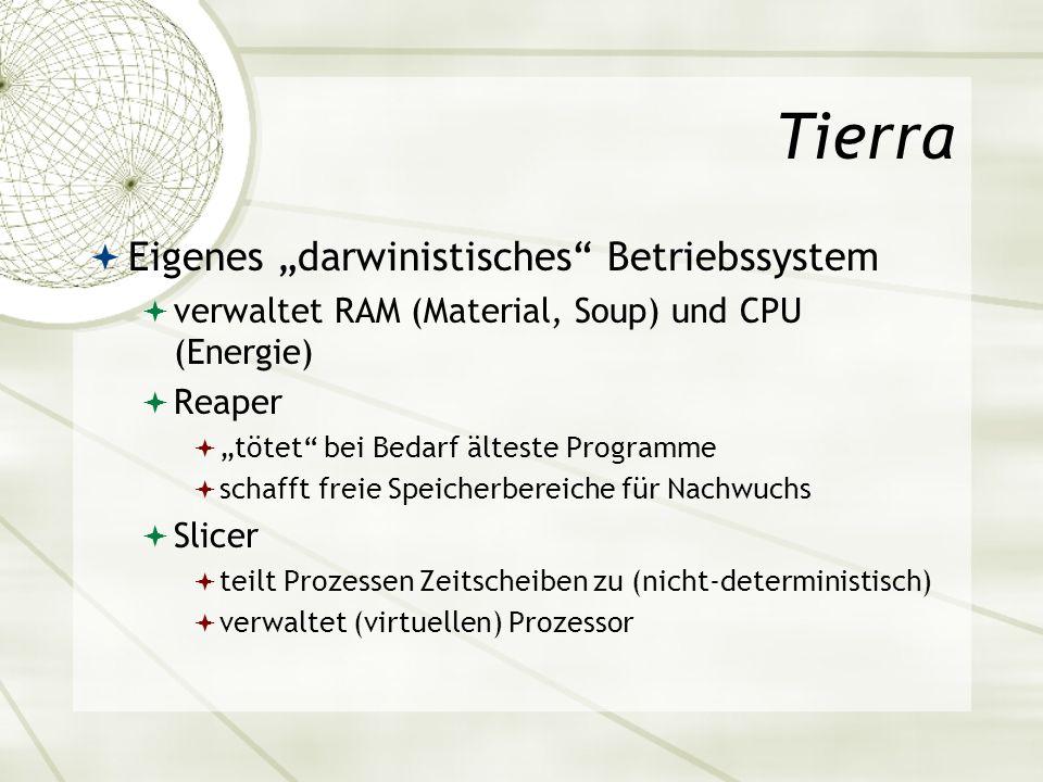 Tierra Eigenes darwinistisches Betriebssystem verwaltet RAM (Material, Soup) und CPU (Energie) Reaper tötet bei Bedarf älteste Programme schafft freie