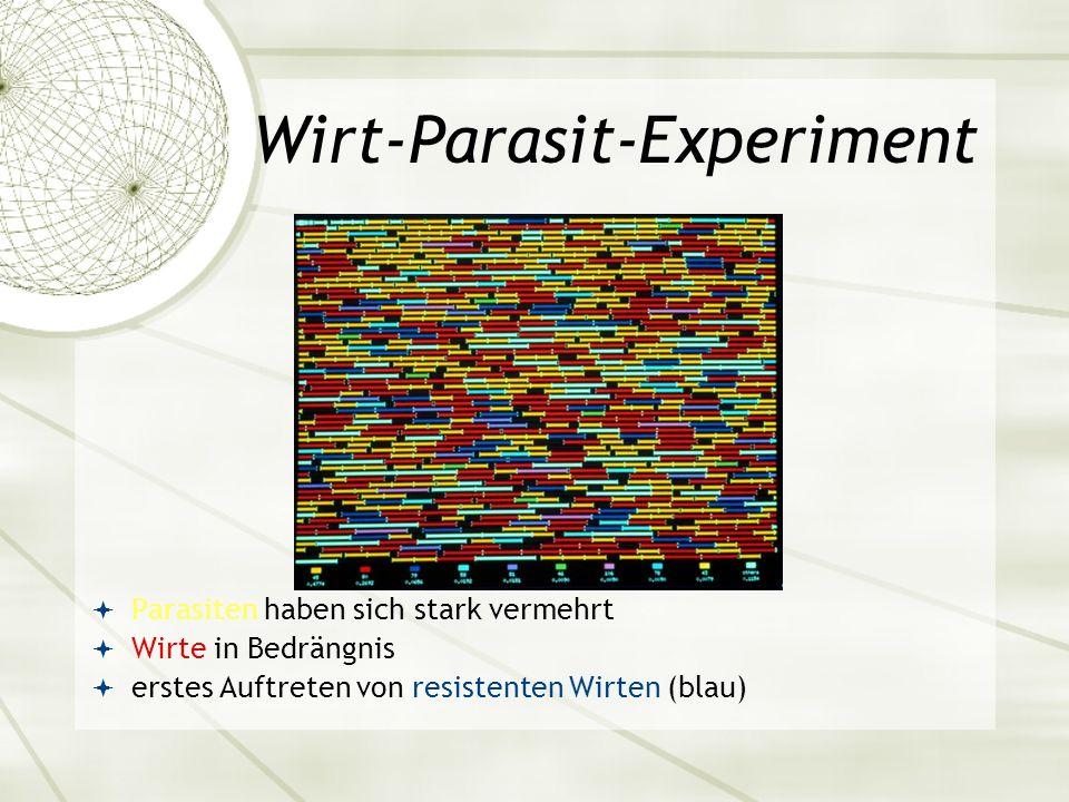 Wirt-Parasit-Experiment Parasiten haben sich stark vermehrt Wirte in Bedrängnis erstes Auftreten von resistenten Wirten (blau)