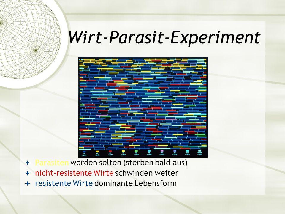 Wirt-Parasit-Experiment Parasiten werden selten (sterben bald aus) nicht-resistente Wirte schwinden weiter resistente Wirte dominante Lebensform